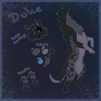 Duke Quickref by Soldjagurl