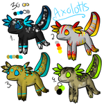 Axolotl adoptables! !20 POINTS! by Storm-adopts-13