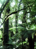 New Zealand Green by psychodiva