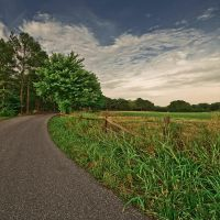 country road by icondigital