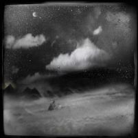 Desert Nights by intao
