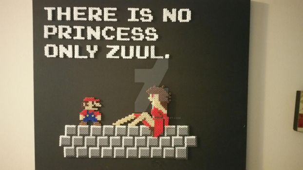 There is no Princess...Only Zuul. by KobayashiMaru77
