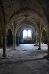 DSC00684 Battle Abbey 24 by wintersmagicstock