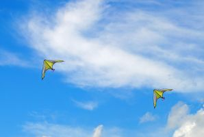Kites 3 by LucieG-Stock