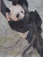 Panda by Apocalyptic-Bliss