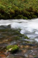 Rushing River by CrazyGirL44