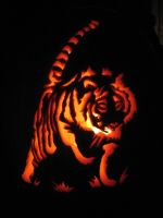 Tiger Pumpkin 2 by ShonnaKay
