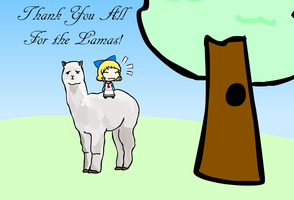 Thank You All For the Llamas by AkaiChounokoe