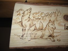 the Wolf Valley - detail n.1 by Sekishiki