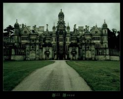 Hill House by Nel-Whipwind