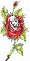 Rose and Skull 2006 by vikingtattoo