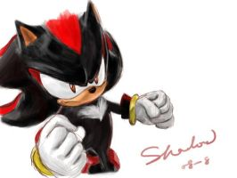 Shadow the hedgehog by Ade-Queen