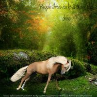 Don't Throw Stones at the Beautiful by Thunderbolt-Designs