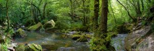 Golitha Falls Panorama by runique