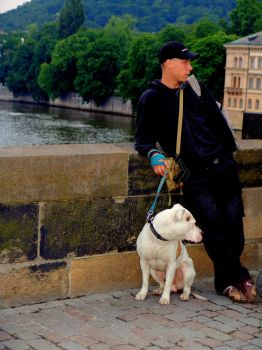 Man and dog on bridge, Prague by CultureQuest