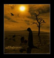 When the Sun goes Down... by FairieGoodMother