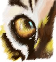 Um, tiger eye by Chapface