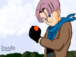 Trunks by Terrami