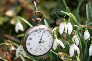Pocket watch and snowdrops flower stock by Nexu4