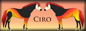 Ciro Ref by Drasayer