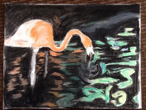 Flamingo, pastel by Riverwyte