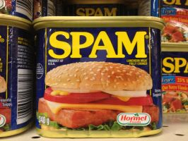 SPAM by FrenchSkinhead