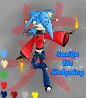 Sanika the hedgehog -16 years- by ADSanika