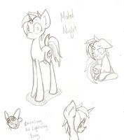 MLP OC: Muted Night by TheCat-In-TheClouds