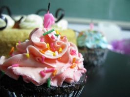 Cup Cake Unlimited by jeanineann