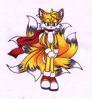 Tails the... Kitsune? by ShadOBabe