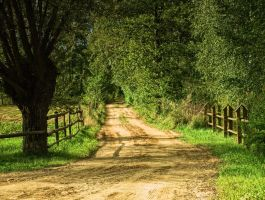 Dirt Road by HeretyczkaA
