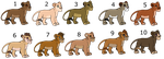 Mystery Cub adopts (Closed)  1/10 by ShockAdopt