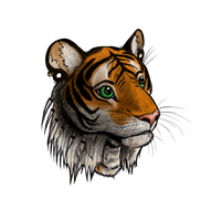 Tiger Commission by Kerrzai