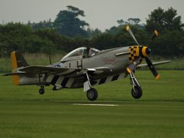 Mustang Old Warden by davepphotographer