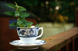 Morning dew in my cup by Linuziux