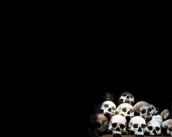 Skull Wallpaper 1 by Father-Zerberus