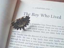 The Boy Who Lived 3 by alicecorley