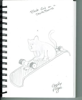 Black cat on a skateboard by empty-pages-14
