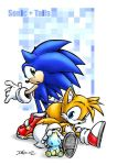 Sonic, Tails and a Chao. by maskedferret