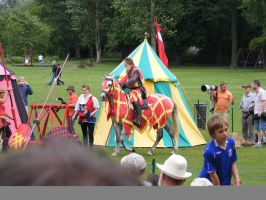 Jousting - Knight 22 by Axy-stock