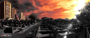 Infrared Graveyard by bamboomix