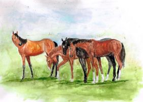 the yearlings by ballenclieff