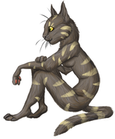 This Cat by Khalico