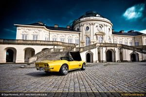 Stingrays at Rokoko Castle XIV by AmericanMuscle
