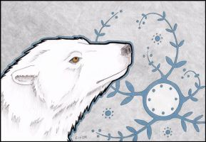 Polar Bear II by urbanimal