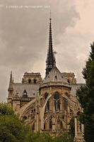 Notre Dame 3 by Simina31