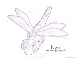 Novel the Dragonfly by LiitTutubi