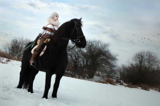 On a horse made of cold currents and liquid conver by Juri-cosplay