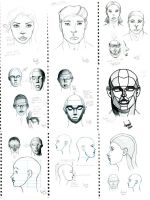 Sketchdump: Head Practice by Fellhauer
