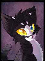 Obsidiankit by Bluefire-kitteh